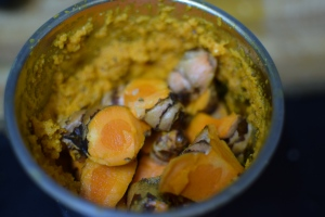 Fresh - grinded turmeric roots as paste